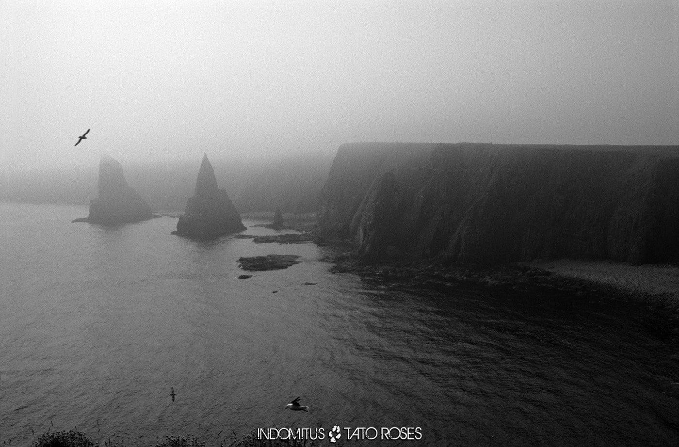 Escocia 1 72 BN Stacks of John O Groats Duncansby Head