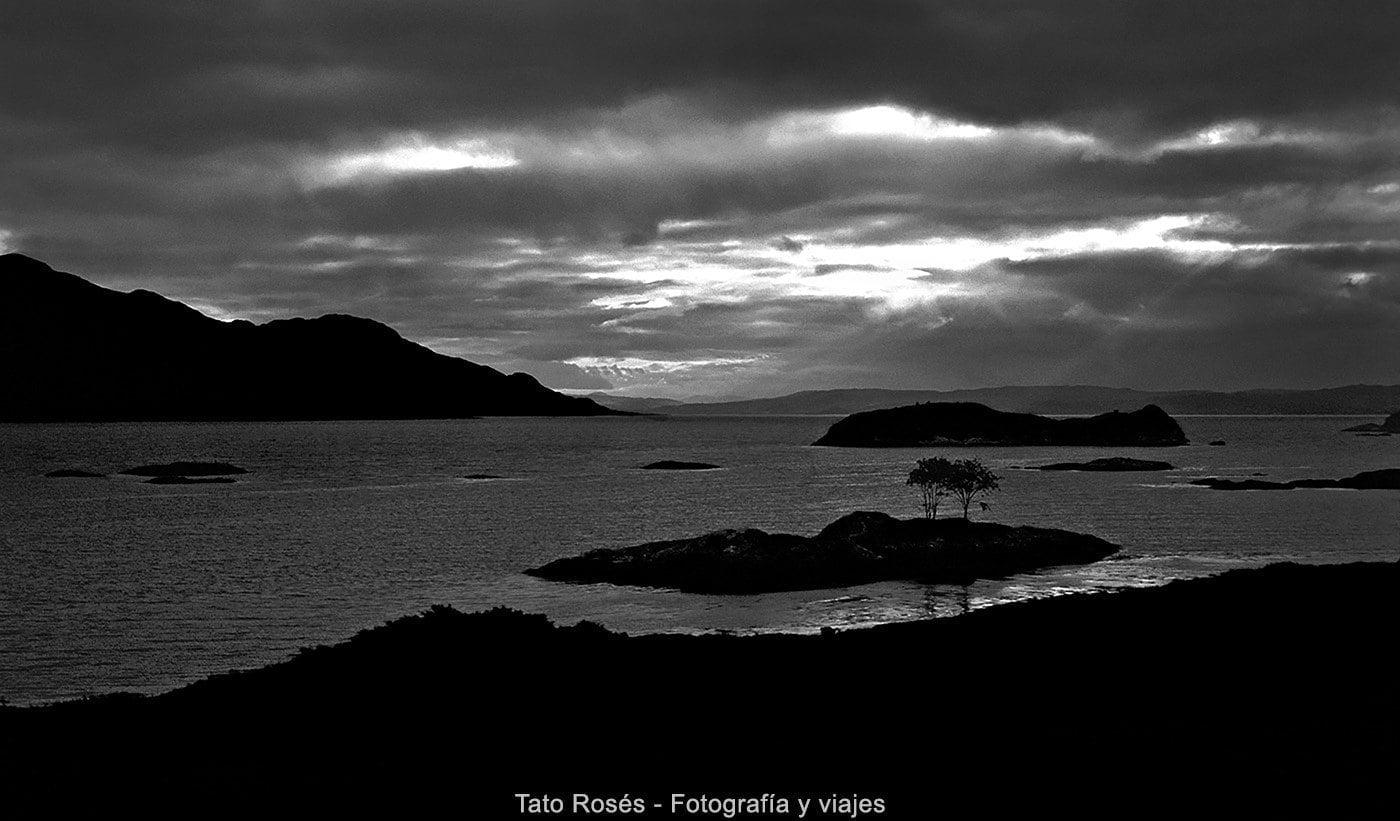 Escocia Indomitus Tato Rosés 07