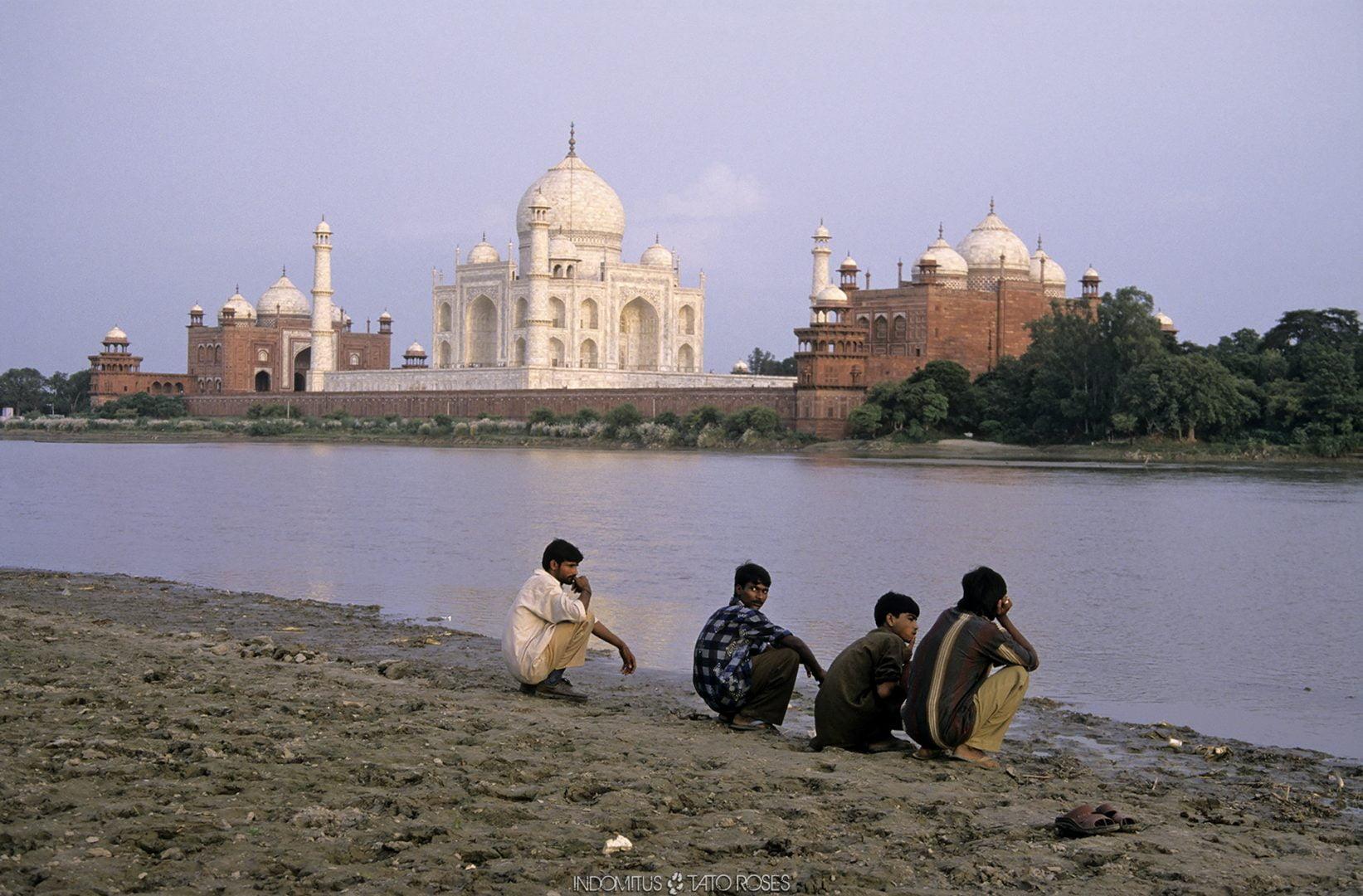 India  Indomitus Tato Rosés 27