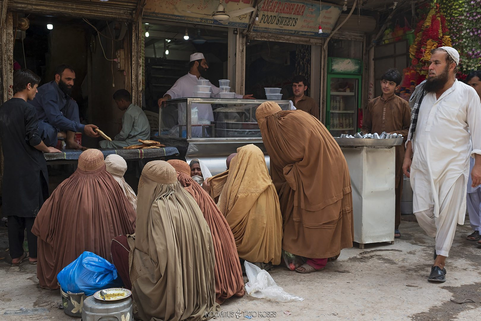 Pakistán Indomitus Tato Rosés 45