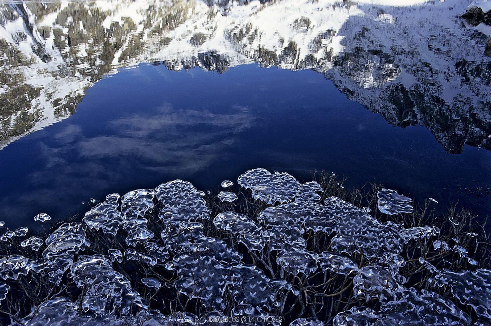 Pirineos Indomitus Tato Rosés 22