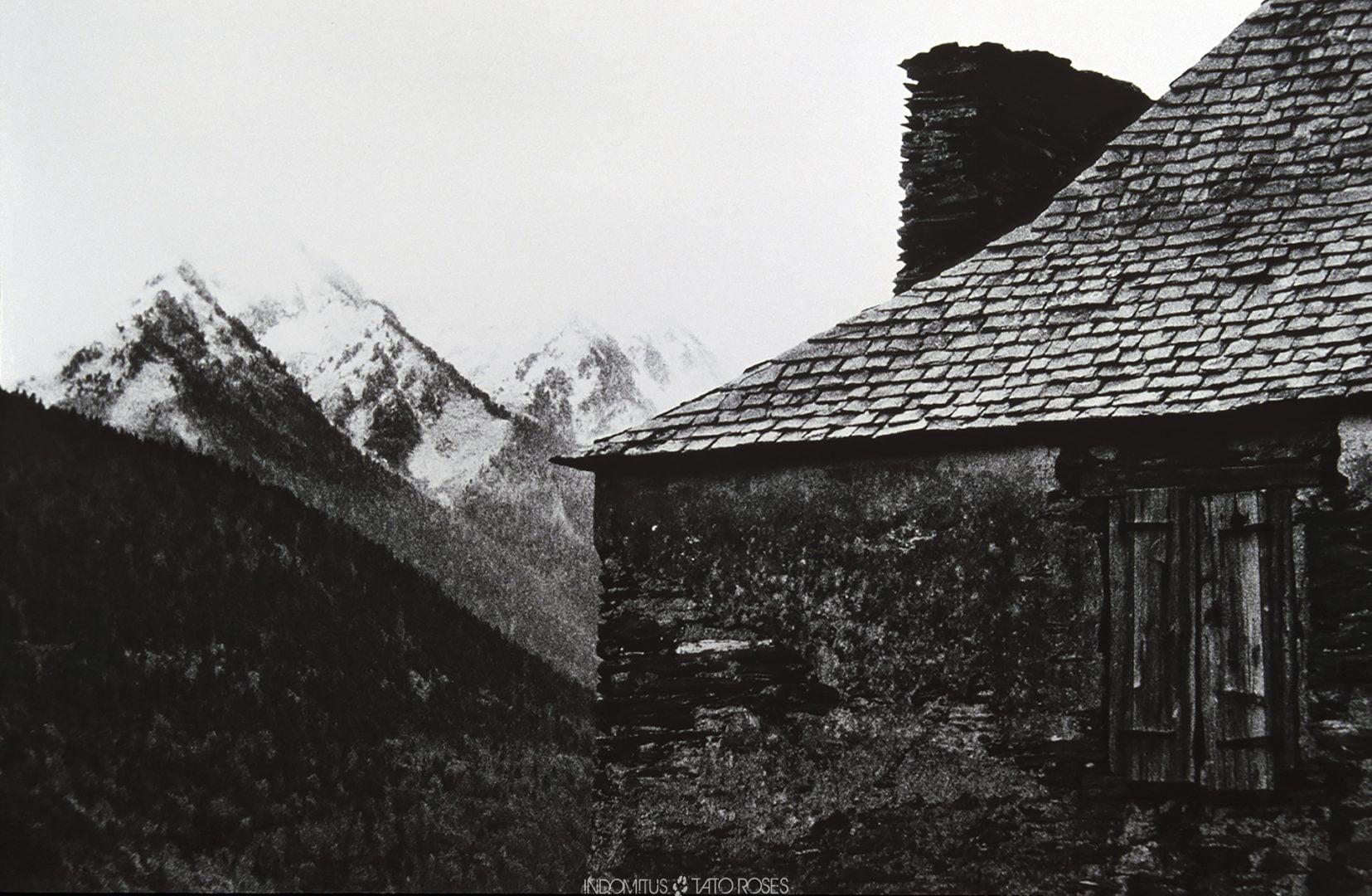 Pirineos Indomitus Tato Rosés 35