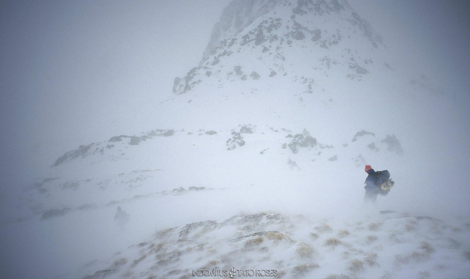Pirineos Indomitus Tato Rosés 69 1