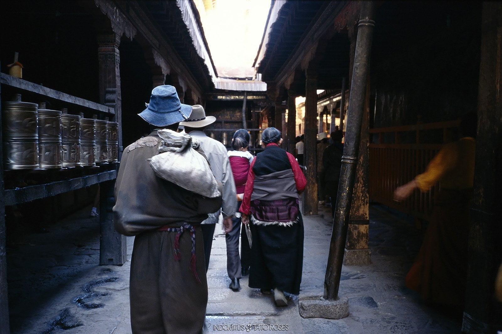 Tíbet  Indomitus Tato Rosés 02