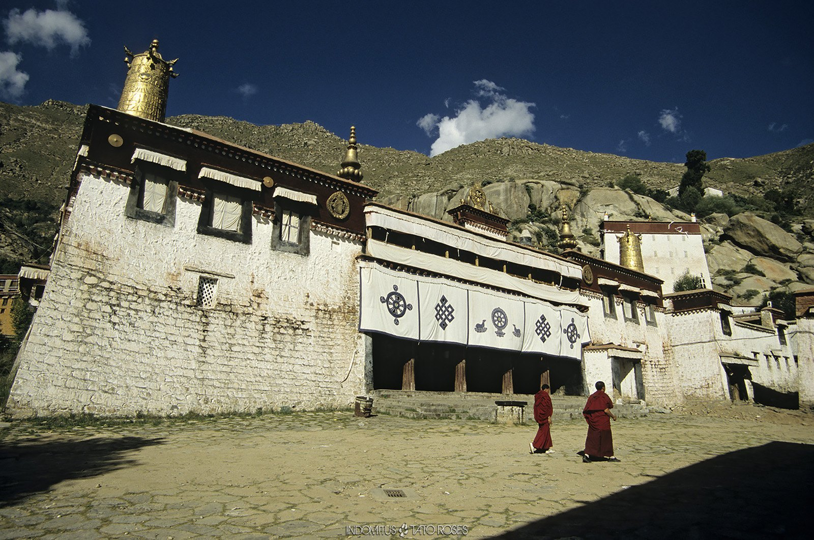 Tíbet Indomitus Tato Rosés 05