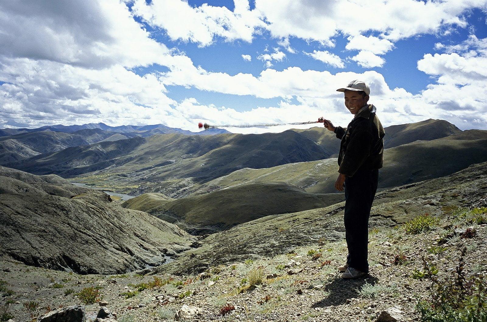 Tíbet Indomitus Tato Rosés 17