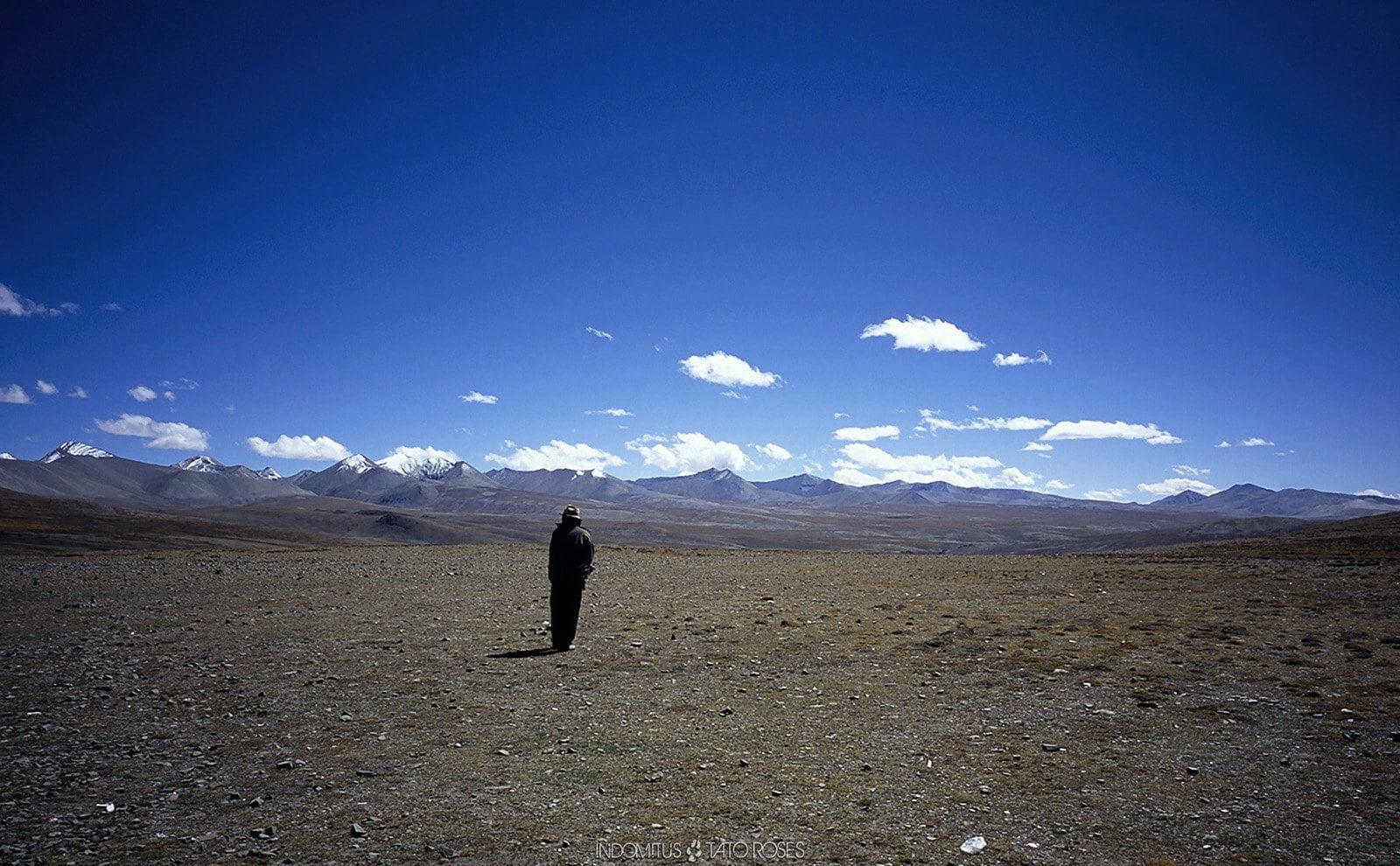 Tíbet Indomitus Tato Rosés 21