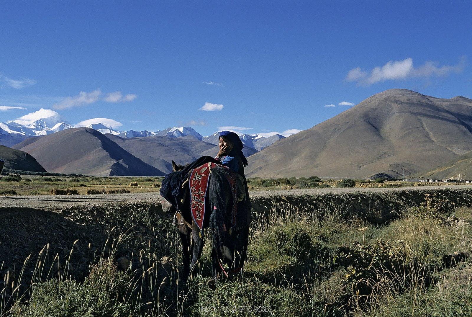 Tíbet Indomitus Tato Rosés 23