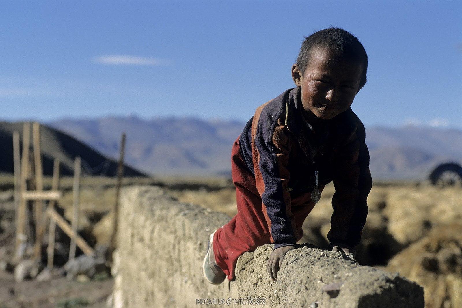 Tíbet Indomitus Tato Rosés 27