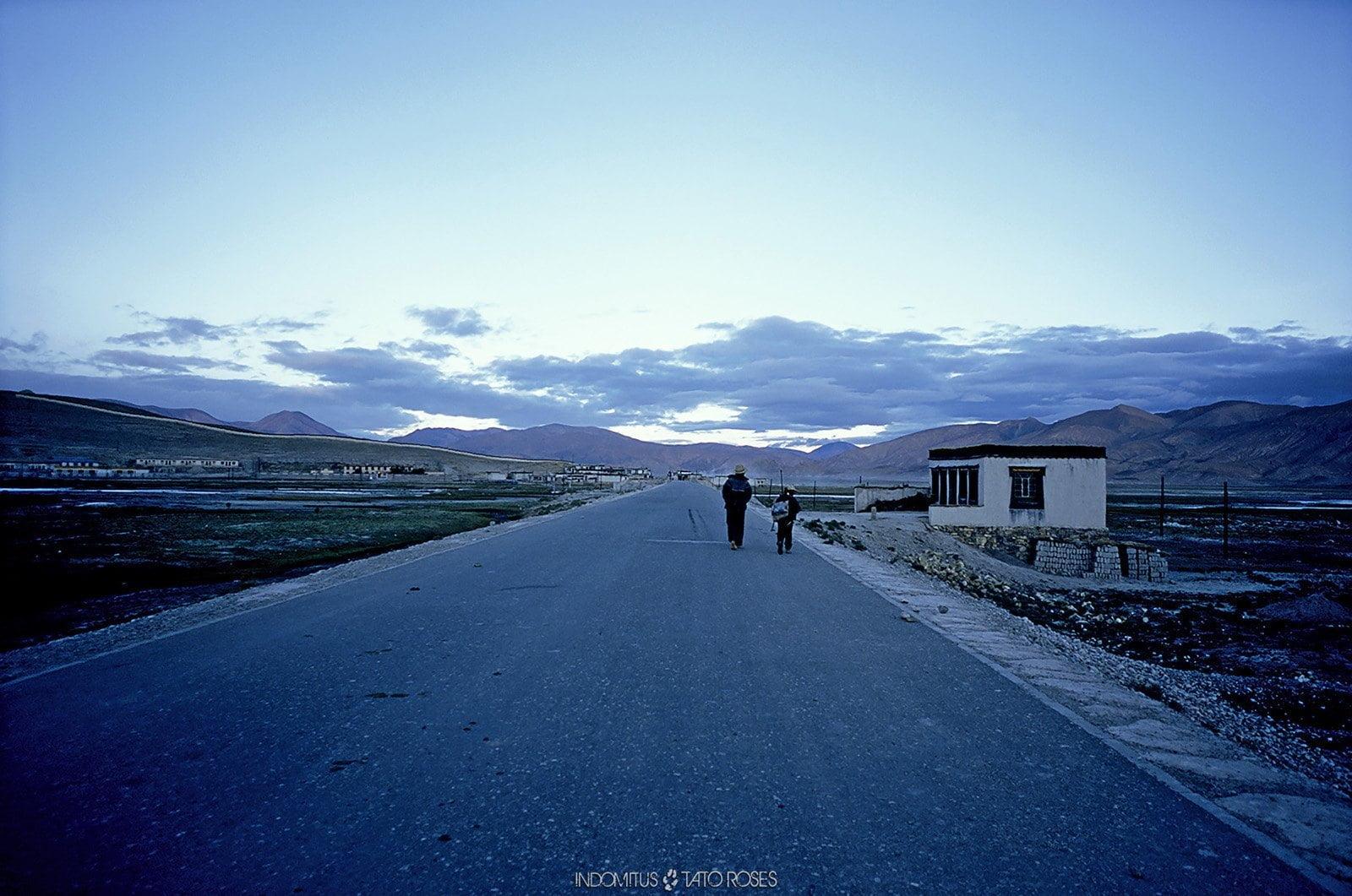 Tíbet Indomitus Tato Rosés 28