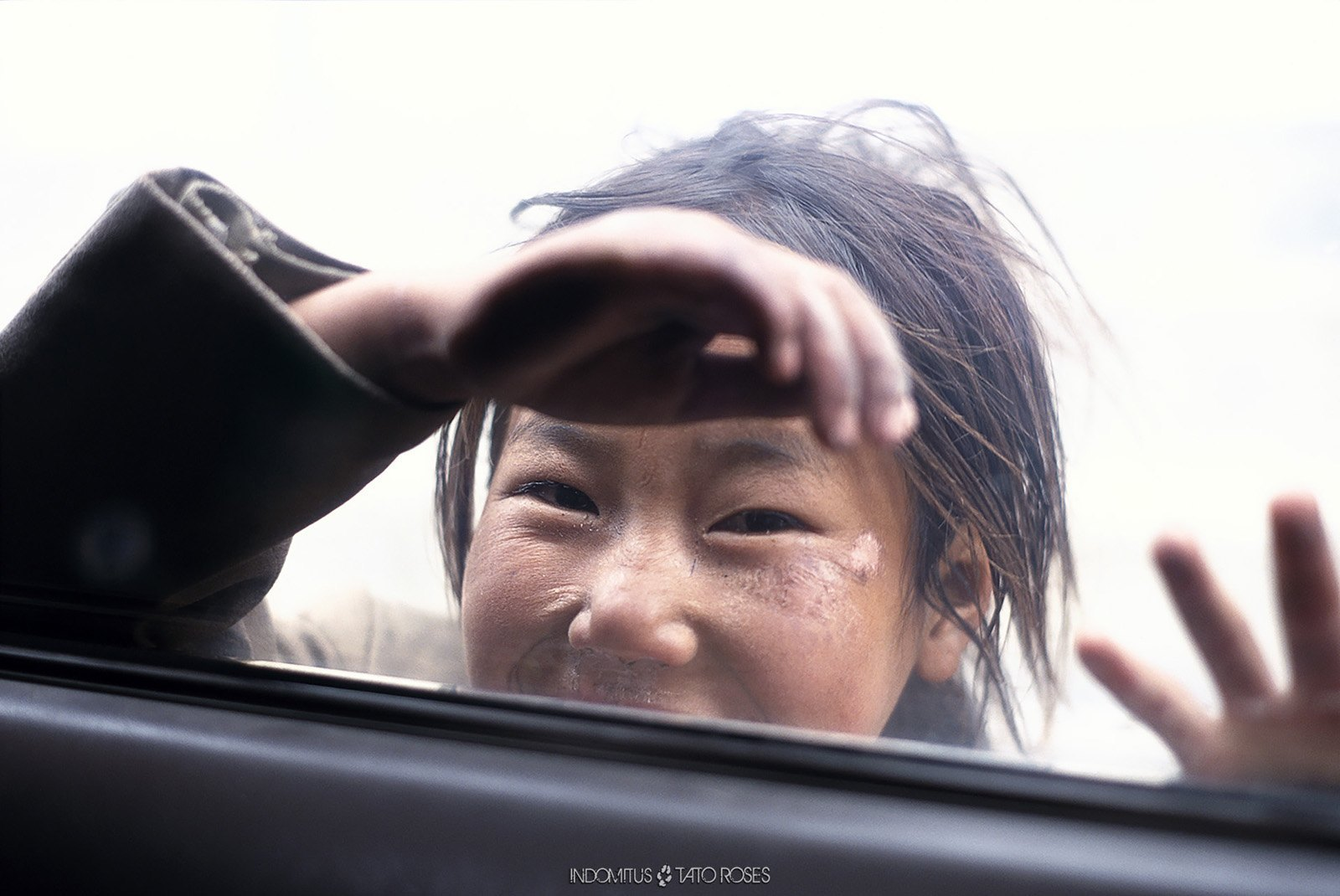 Tíbet Indomitus Tato Rosés 30