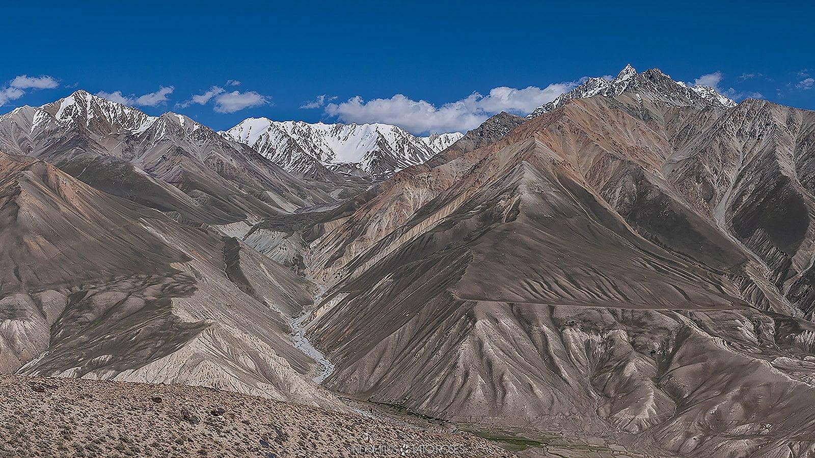 Tayikistán  Indomitus Tato Rosés 08
