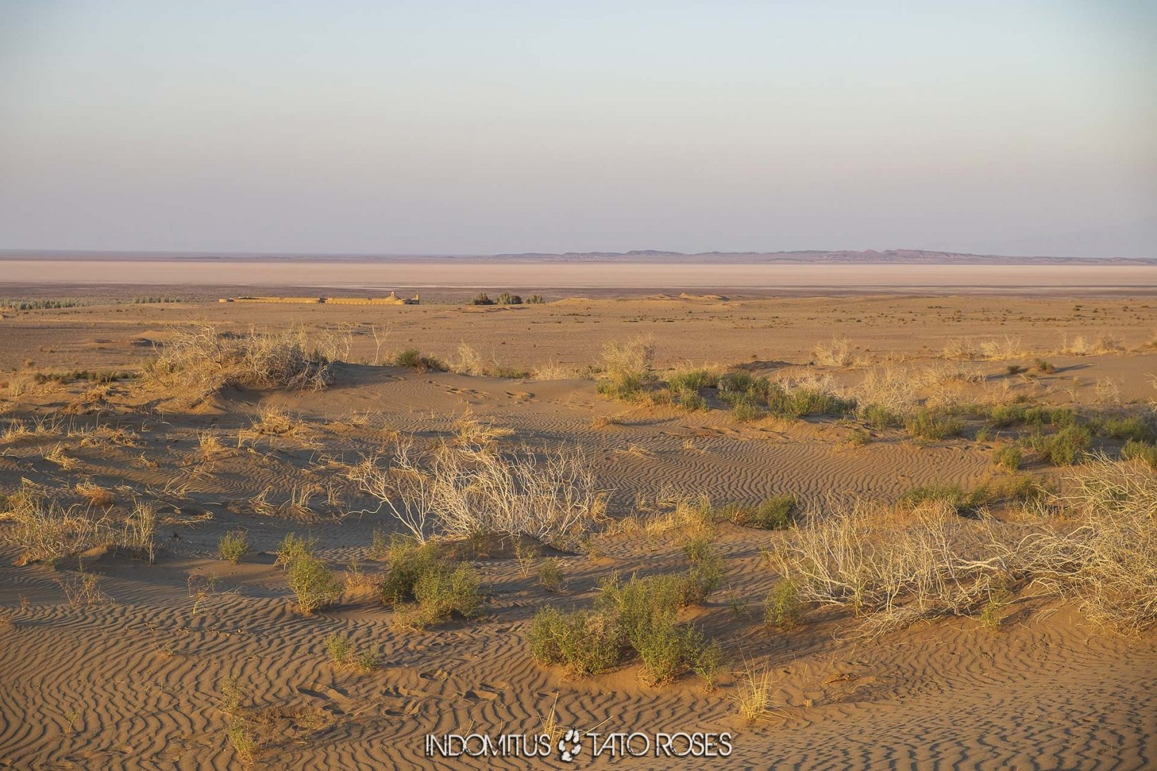 Irán 545 Caravasar kavir Maranjab