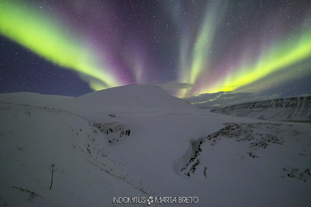 Aurora boreal en los fiordos de Islandia