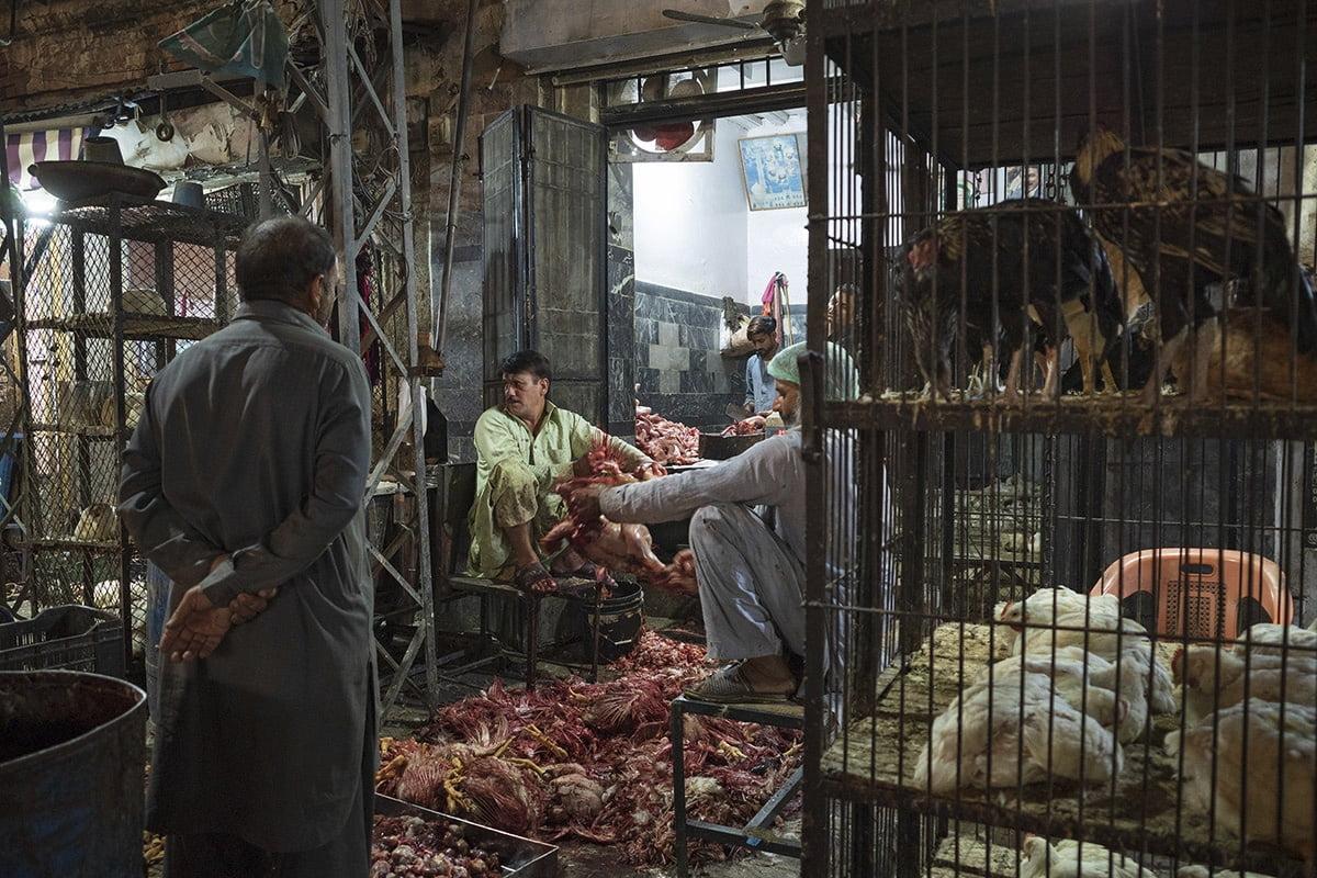 Mercado de pollos, Rawalpindi