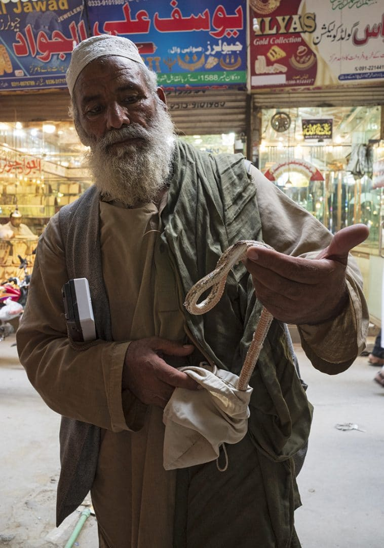 Vendedor de serpientes, Pakistan