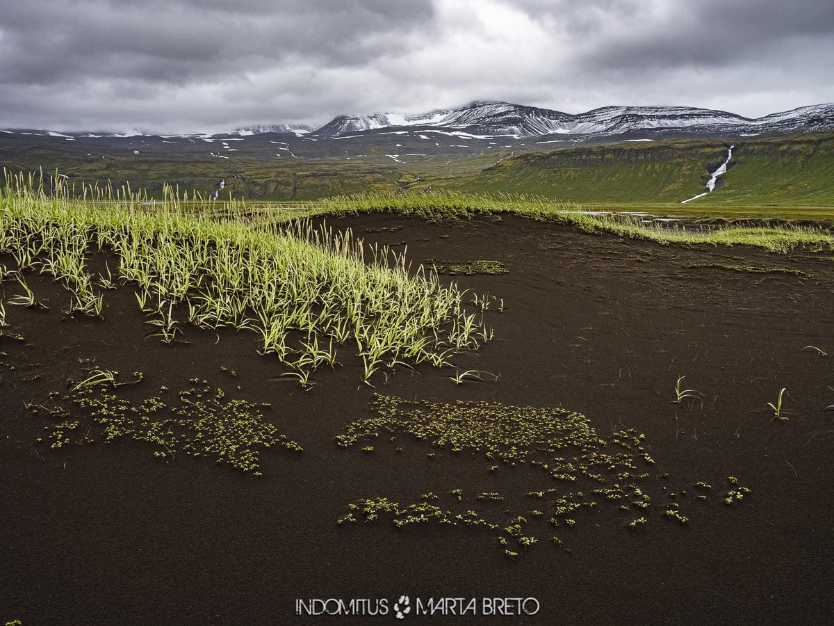 Paisaje en Hornstrandir, Islandia