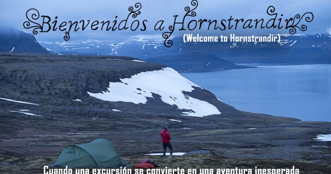Portada de la película Bienvenidos a Hornstrandir