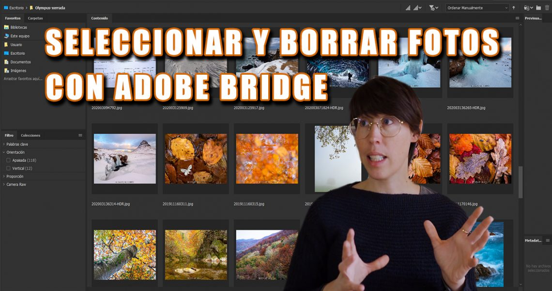 caratula-tutorial-bridge